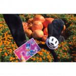 Disney☆Halloween